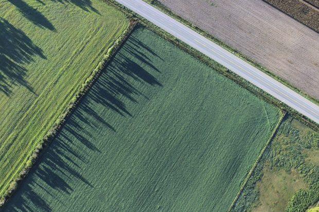 pexels photo 475680 e1500832146665 - Land Loan